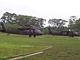 Blackhawk Helicopters Were the Prefered Mode of Transportation